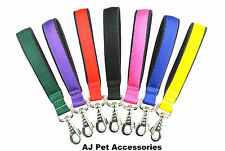 """10""""Short Close Control Dog Lead With Padded Handle 25mm Strong Various Webbings"""