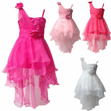 Formal Kids Lace Baby Princess Bridesmaid Flower Girl Dresses Wedding Party Prom