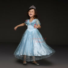 Princess Cinderella Costume Girls Kids Fancy Party Dress Tulle Skater Skirt
