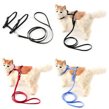 Pet Cat Dog Puppy Rabbit Kitten Rainbow Harness Lead Adjustable Collar Leash