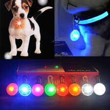 Fascinating Pet Dog Cats Puppy LED Flashing Collar Safety Night Light Pendant