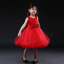 Girls Flower Embroidered Tutu Party Dress Wedding Bridesmaid Princess Pageant