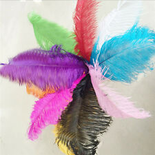 20pcs Mixed Colors beautiful Natural OSTRICH FEATHERS 6-22'inch/15-55cm