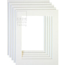 Picture Photo Mounts, Pack of 5, Bevel Cut, White Core
