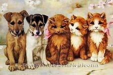 Friends ~ Cats & Dogs ~ Counted Cross Stitch Pattern