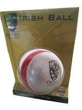 Genuine Cricket Australia Swing Weighted Training In/Outdoor Cricket Tennis Ball