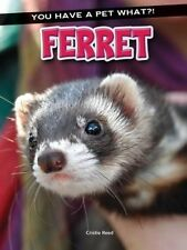 Ferret by Cristie Reed