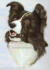 Border Collie Portrait ~ Dogs ~ Cross Stitch Pattern
