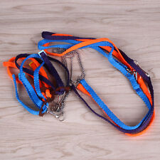 Adjustable Small Animal Lizard Harness Leash Rope Strap for Outdoor Walk