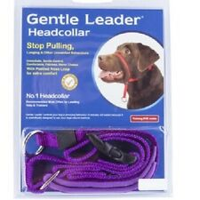 Gentle Leader Headcollar Purple S, M, L & XL-Beau Pets Gentle Leader Head Collar