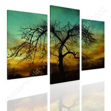 READY TO HANG CANVAS Lonely Tree In A Sunset Split 3 Panels 3 Panels Giclee