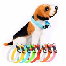 Pets Dog Cat LED Flashing Light-up Safety Nylon Zack & Zoey Flat Collar Durable