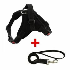 Dog Harness Vest Reflective Tape Yarn Breathable Comfortable Mesh Pet Dog Leash