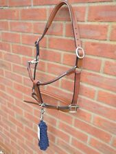Exclusive Bargain Padded Leather Headcollar with/without Lead Rope Black Brown