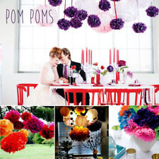 "10"" Tissue Paper Pompoms Pom Poms Flower Balls Handmade Wedding Party Decoration"