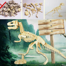 Creative Dinosaur Science Kit–Dig Up Dino Fossils and Assemble Excavation Toys