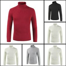 Pullover Mens Sweater Warm Turtle Neck Knit Winter Casual Jumper Knitwear Blouse