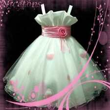 Light Pink Pageant Flowers Girls Dress 2-3-4-5-6-7-8-9Y