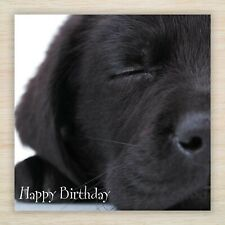 Quality Birthday Card - Lots of Labrador & Retriever Puppy & Dogs Designs to see