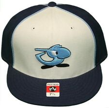 New! Chunichi Dragons Flatbill Fitted Hat-3D Embroidered Cap