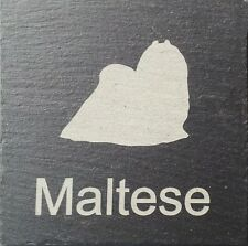 Beware Of The Maltese  Natural Slate Dog Sign Plaque Sign 11 Designs