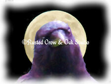 Crow Head against Moon Black Bird Humorous Art Print Matted Picture USA A338