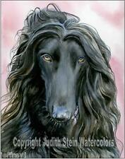 Afghan Hound Dog Art Print of Watercolor Painting Artist Judith Stein Signed