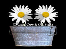 White Daisy Flowers Washtub Black Contemporary Home Decor Matted Picture A344