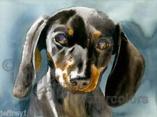 DOXIE MOXIE Miniature Dachshund Dog Art Print Watercolor Painting Artist Signed