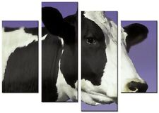CANVAS WALL ART LARGE QUALITY ABSTRACT PRINTS CONTEMPORARY DIGITAL COW PURPLE