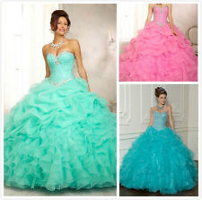 Sexy Sweetheart Quinceanera Dresses Bridal Prom Party Ball Gown 6 8 10 12 14 16
