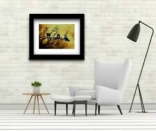 Three (3) Crows on Branch against Stormy Sky Matted Picture Art Print A522