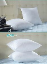 Cushion Insert Throw Pillow Inner Pad Filler Form Square 19x19 Rectangle 19x12""
