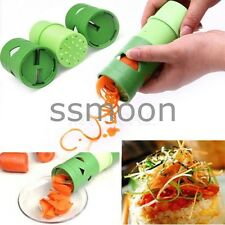 Vegetable Fruit Twister Cutter Slicer Processing Device Kitchen Utensil Hot Tool