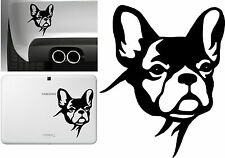 PEGATINA - STICKER - BULLDOG FRANCES - FRENCH BULLDOG - VINILO - VINYL - TUNNING