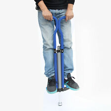 Funny Flybar Foam Master Pogo Stick Outdoor Toys Jumping  For Kids USA Seller