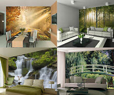1Wall Forest Woodland Wallpaper Murals  Photo Wallpaper Next Day Delivery