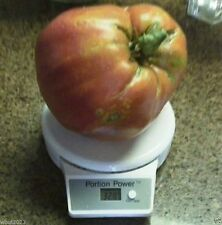 Hungarian Heart Tomato Seed ,A.K.A,Oxheart Tomatoe,Open Pollinated !HUGE Tomato!