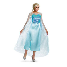 Frozen Disney Classic Elsa Snow Queen Gown Adult Costume