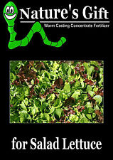 SALAD LETTUCE PLANT SEEDS, WORM CASTING LIQUID FERTILIZER ORGANIC