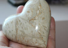 Ancient Fossil Stone Heart