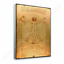 CANVAS +GIFT The Vitruvian Man Leonardo Da Vinci Posters Paints Prints Giclee