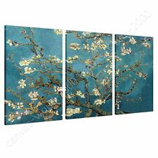 CANVAS +GIFT Almond Blossom Vincent Van Gogh 3 Panels Prints Painting Poster