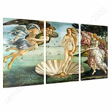 CANVAS +GIFT The Birth Of Venus Sandro Botticelli 3 Panels Paints Paintings