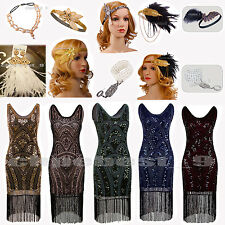 1920's Flapper Dress Great Gatsby Sequin Beads Lots Downton Fringe Fancy Costume