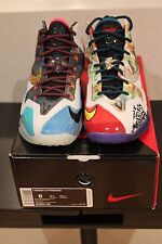 Nike Lebron James 11 XI Premium What The Lebron US9 US9.5 Deadstock