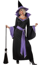 Adult Incantasia Witch Costume Purple & Black Halloween Fancy Dress Outfit