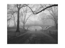 Gothic Bridge, Central Park, New York City Art Print by Silberman, Henri