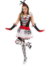 Harlequin Honey Ladies Womens Jester Clown Halloween Fancy Dress Costume
