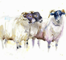 HELEN ROSE Limited Print WE THREE SHEEP animal art watercolour painting 299